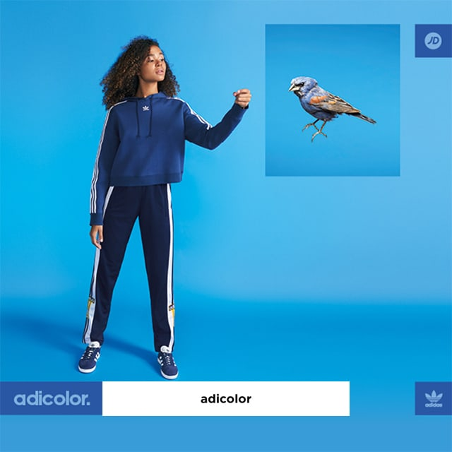 adidas originals adicolor